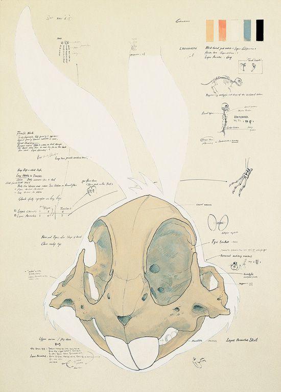 Создание черепа Баггза Банни