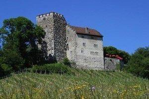 Замок Габсбург, Швейцария. Название замка, согласно легенде, первоначально было Хабихтсбург (нем. Habichtsburg), «Ястребиный замок», в честь ястреба, который сел на только что отстроенные стены крепости. Согласно другой версии, название происходит от старонемецкого hab — брод: крепость должна была охранять переправу через реку Аре.