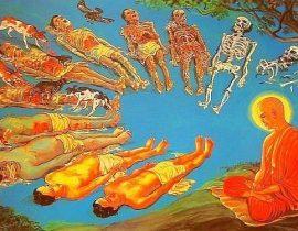 meditatsiya-pered-trupom