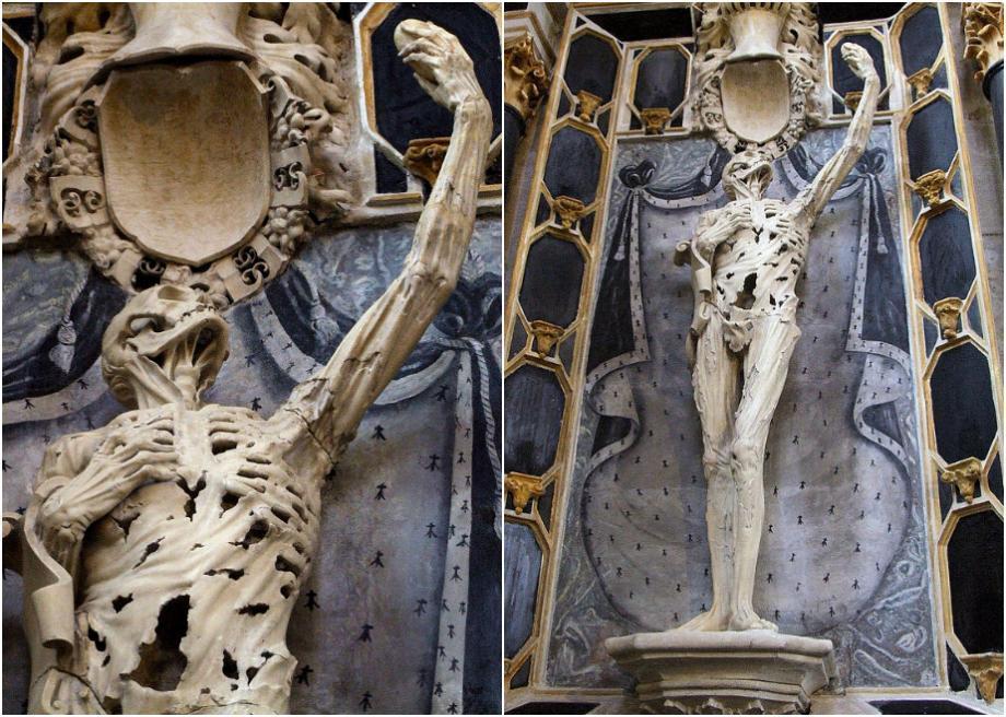скелет транзи