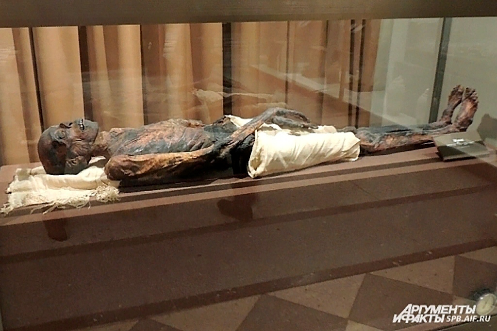 Древнеегипетская мумия